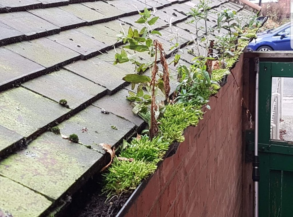Redditch Gutter Clearance Before Photo